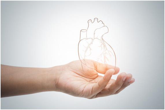 Quando consultar um médico cardiologista